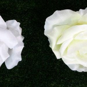 W 246 Троянда голівка