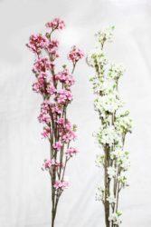 Яблуневий цвіт К2354