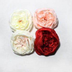 Троянда дика LIU162