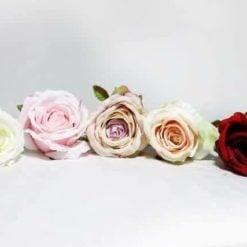 Троянда  SUN388