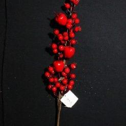 Галузка яблукогоробина CV09058