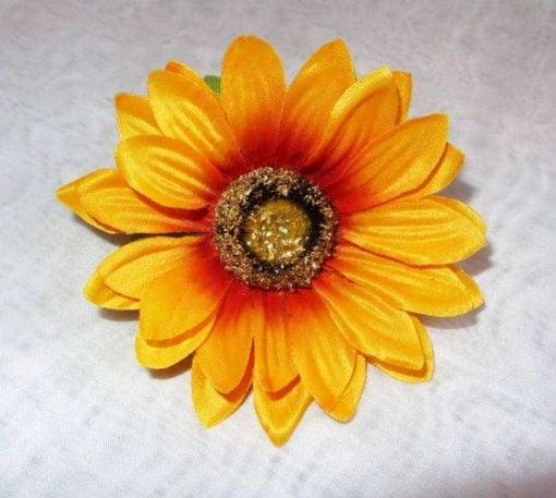Соняшник голівка К18