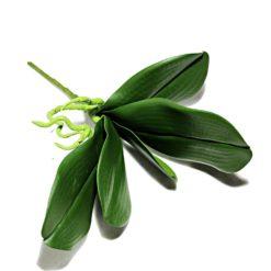Лист орхидея К1765