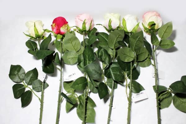 Троянда одинарна К2322
