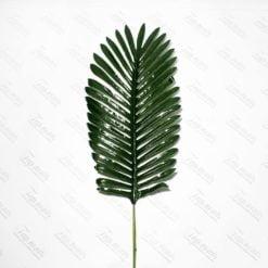 Лист пальми восковий