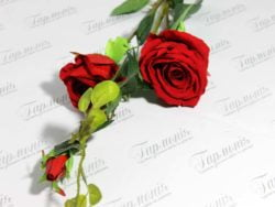 Троянда велюр