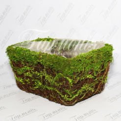 Ємність трава/мох TG55457-3