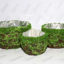Комплект ємностей трава/мох TG55456