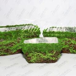 Комплект ємностей трава/мох TG55457