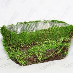 Ємність трава/мох TG55457-2