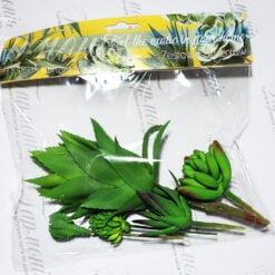 Суколент в упаковці ART17763